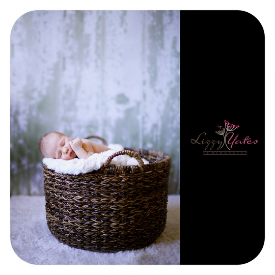 Little Rock Newborn Photography