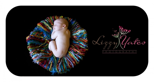 Newborn Photographer in Little Rock Arkansas
