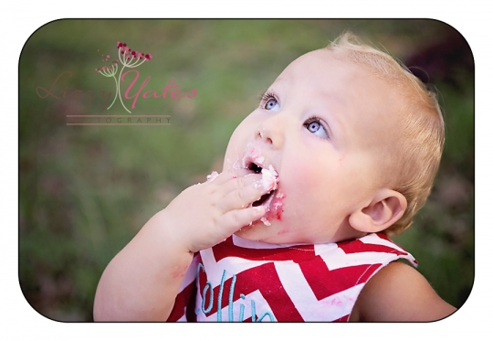 1 year old pictures in little rock with cake smash