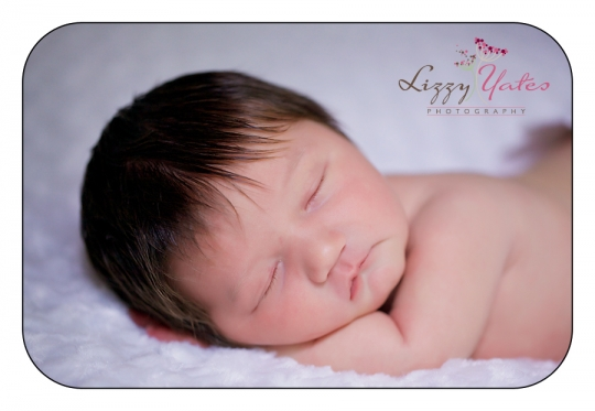 newborn baby pictures by arkansas photographer lizzy yates