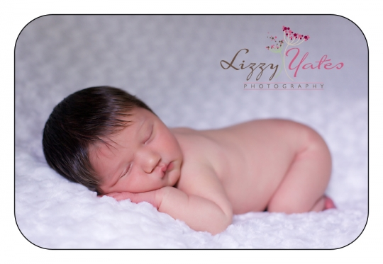 beautiful newborn photography in little rock arkansas