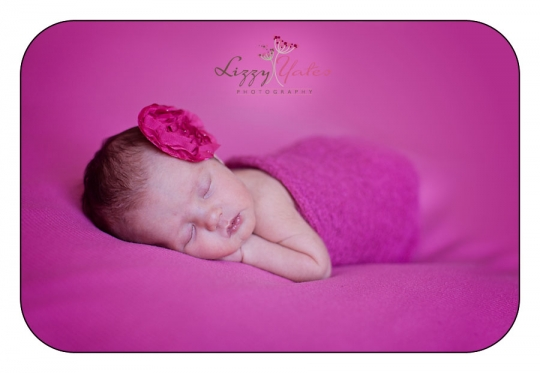 baby girl arkansas newborn pictures lizzy yates