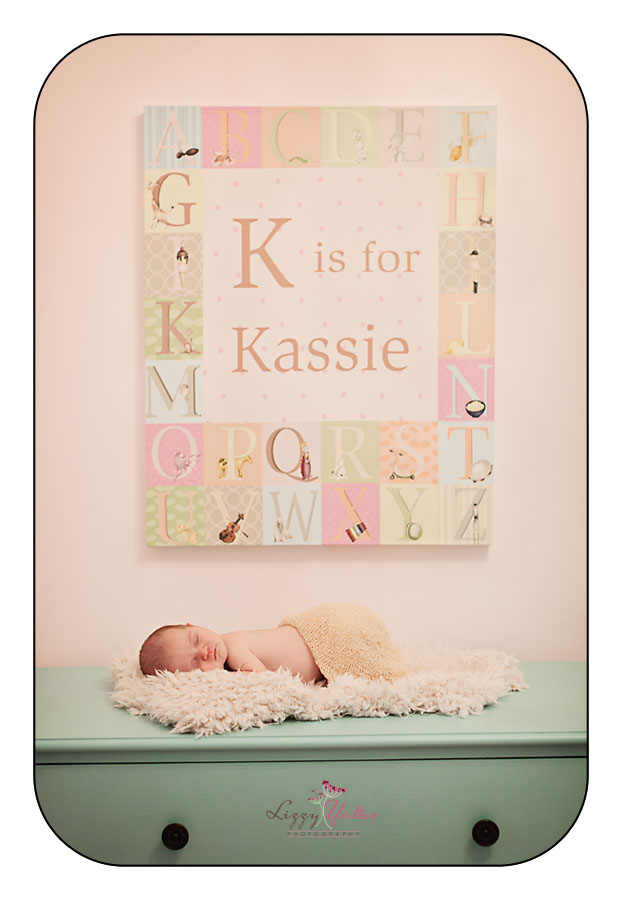 newborn pictures in your home little rock arkansas