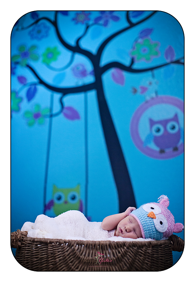lifestyle newborn photography in little rock