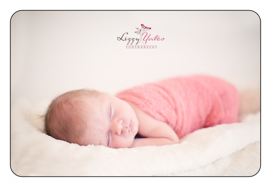 newborn pictures in little rock arkansas